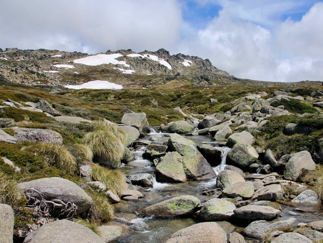 PictureThredbo in Summer, Kos​ciuszko National Park, New South Wales, Australia. Mountain stream and snow.