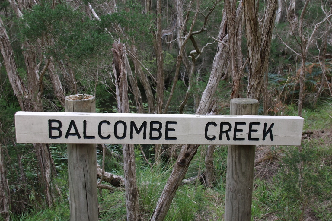 Balcombe Creek, The Briars, Mount Martha, Mornington Peninsula, Victoria, Australia