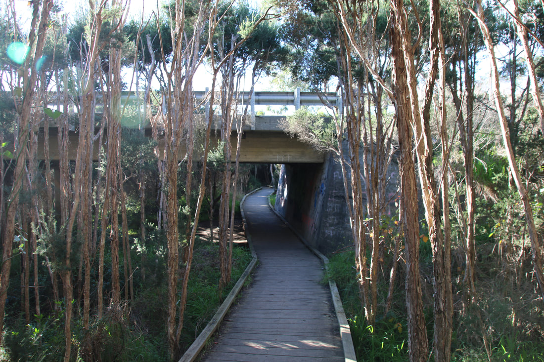 Balcombe Estuary Boardwalk to the Briars. Path under Nepean Highway.