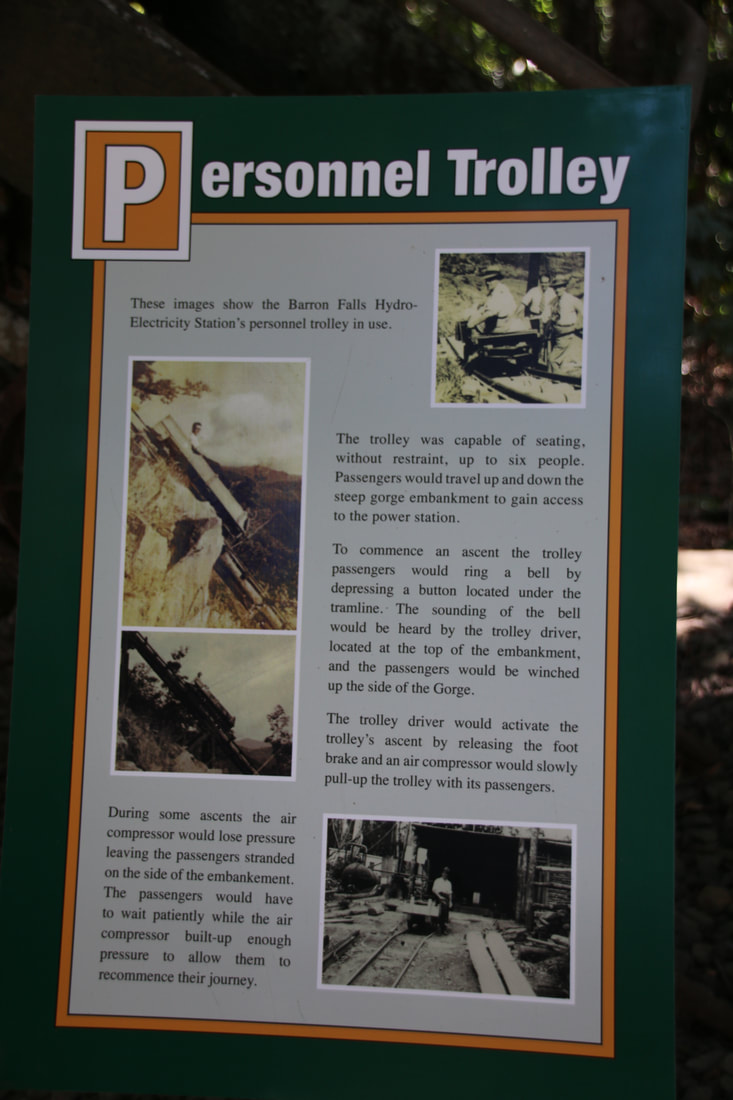 Personnel Trolley, Rainforest Walks, The Skyrail Rainforest Cableway, Cairns to Kuranda, Queensland, Australia