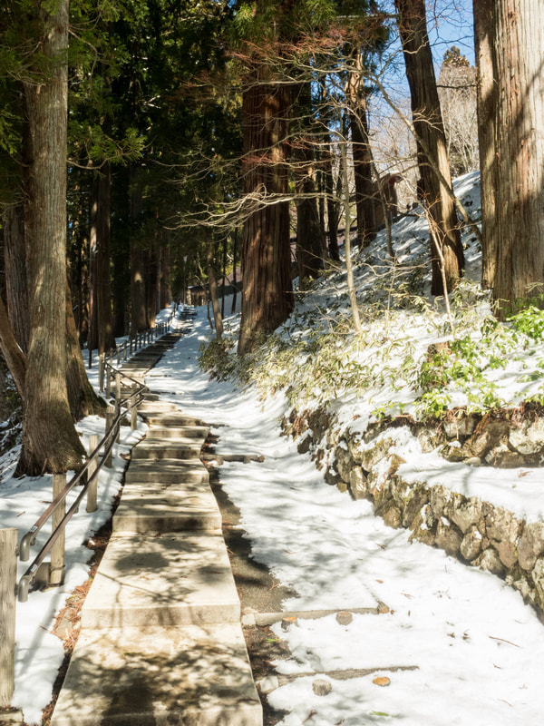 Path ascending to the Middle Togakushi Shrine. Togakushi Middle Shrine. Mount Togakushi, Nagano Prefecture, Japan.
