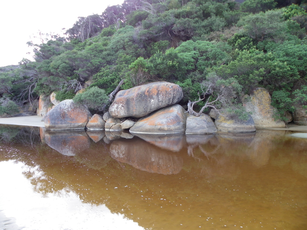 Tidal River, Wilsons Promontory National Park, Victoria, Australia