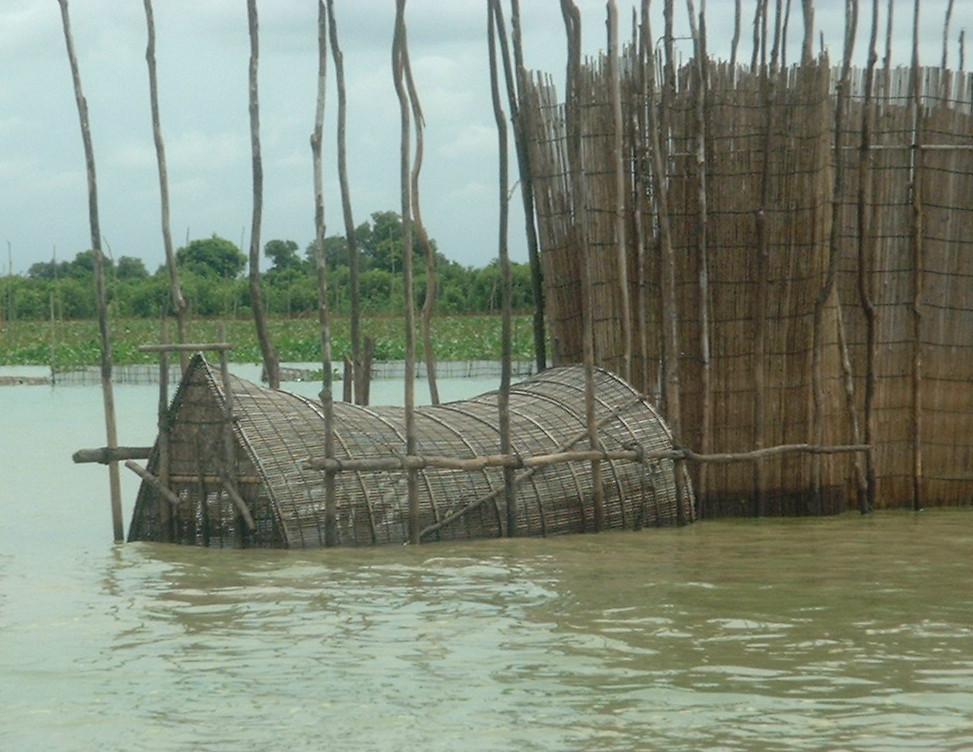 Fishing on the Tonlé Sap Lake near Siem Reap, Cambodia. Fish Trap.